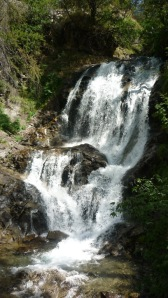 Waterfall close to Saint Dalmas le Selvage in the upper Tinée valley