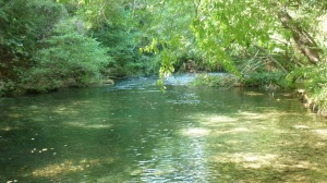 Slightly inland -  a lovely picnic on the banks of the Siagne river, close to Grasse