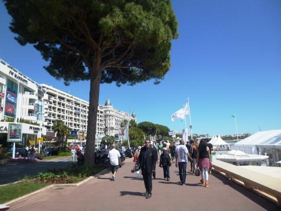 Boulevard de la Croisette, heading towards the domes of the Carlton Intercontinental Hotel