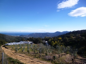A great view looking south-west towards the Esterel mountains and the Mediterranean